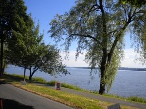 Along Lake Washington