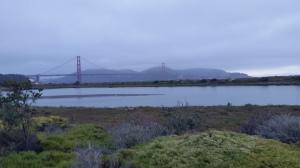 Hello Golden Gate