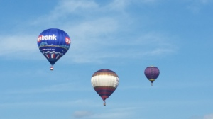 Hound balloons