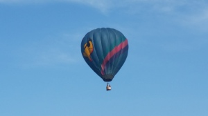 Love the goldfish balloon!!