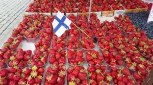 Finnish strawberries